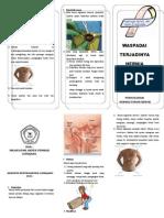 Leaflet Hernia