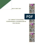 """Os """"Cabulas"""" de Salvador- Confrontando as Delimitações de 1992 e de 2010"""