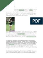 Robert Donatelli PhD PT