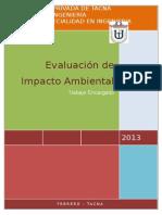 Trabajo Evaluación de Impacto Ambiental