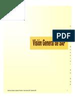 Vision General SAP