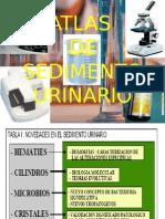 atlasdesedimentourinario1-100623151058-phpapp02