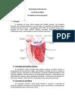 Aula cardiologia