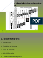 04_Biostratigrafia