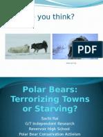 polar bear ppt
