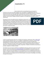 Article   Tornillo De Arquimedes (7)