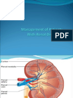 Renal System Ppt