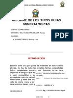 Informe Guias Min