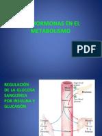 25 Hormonas y Metabolismo en Tejidos Ko 11-06-2015