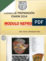 NEFRO 2014