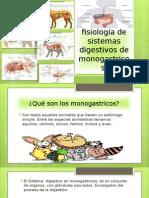 Anatomía y Fisiología de Sistemas Digestivos de Monogastricos