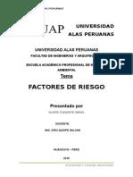 Factor de Riesgo Docx