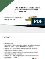 prezentare disertatie