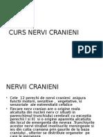 Curs Nervi Cranieni s