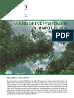 ANÁLISIS DE LA DEFORESTACIÓN EN TIEMPO CASI REAL || Policy Brief N°2