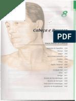 8.1Netter Clínico Cabeça e Pescoço_1