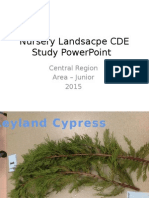 68691 area 2015 jr study powerpoint