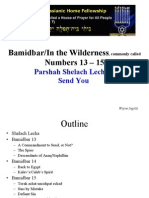 Bamidbar/in the Wilderness, Commonly Called Numbers 13