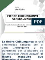 1 DIAPOSITIVAchikungunya_