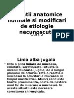 Variatii Anatomice Si Leziuni Ale Mucoasei Curs2