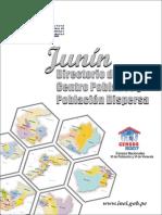 Censo 2007 Poblacion Junin