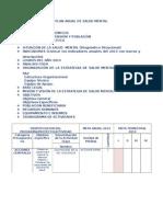 ESTRUCTURA DEL PLAN ANUAL.doc