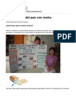 Explorable.com - Experimento Del Pan Con Moho - 2015-06-04