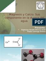 Magnesio y Calcio-1 [Autoguardado]