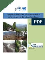 Diagnóstico Biofísico y Socioeconómico Cuenca Media-Alta Río Coco (Paraiso)