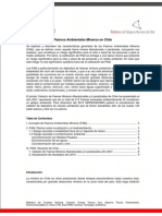 Informe PAM Chile