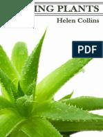 Healing Plants - Helen Collins