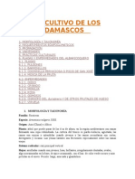El Cultivo de Los Damascos