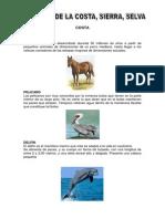 Animales de La Costa Sierra y Selva