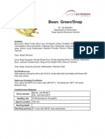 Bean Green Snap