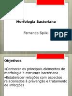 Morfologia bacteriana