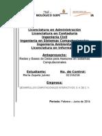 Redes y Bases de Datos Para Asesores en Sistemas Computacionales