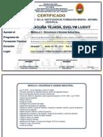 Certificado Modulares - Seguridad Ilo 2