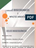 Ciclos Biogeoquímicos e Desequilíbrios Ambientais