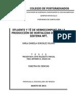 Efluente y te de vermicompost en la producción de hortalizas de hoja en sistema NFT.