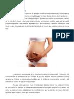 Embarazo y Parto Modificado