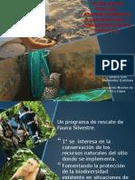 Presentación12 TENNICAS DE RESCATE EN FAUNA