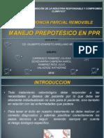 Ppr Grupo1 Diagnostico en Ppr