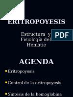 Eritrocito fisiología