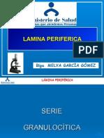 LÁMINA PERIFÉRICA