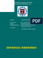22188543-Defensas-Riberenas.ppt
