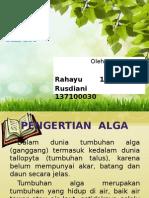 PPT Alga