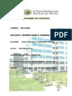 Informe de Practicas Gmev