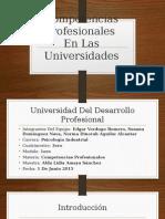 Competencias Profesionales en Las Universidades