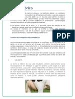 Analisis Microbiologico de La Leche y Sus Derivados