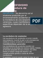 ofidismopicaduradeserpientes-120509094409-phpapp02.pptx